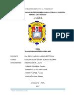 Trabajo Monográfico Del Maiz