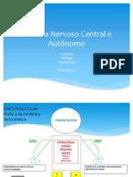 Sistema Nervoso AutônomoPDF
