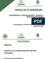 Estado Actual Cadena Forestal Orinoquia.pptx