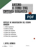 El Organismo Humano Como Una Entidad Biológica