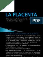 Ecografia Placenta - Cordon Umbilical