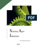 sistemas_agroindustuiais_definições e conceitos_pdf.pdf