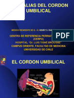 Cordon Umbilical