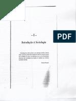 Livro de Sociologia Cap 1 e 2 (2)