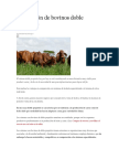 Producción de bovinos doble propósito.docx