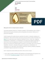 Los Granos Enteros _ La Fuente de Nutrición _ Harvard School TH Chan de Salud Pública