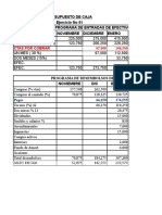 Presupuesto de Caja (1)