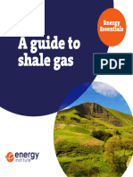Energy Essentials Shale Gas Guide WEB VERSION