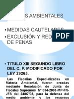 4818_medidas_cautelares.pdf