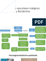 Tumores vasculares malignos y Borderline