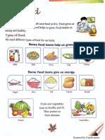 Evs food material
