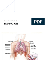 Science F3 Chap 1-Respiration-PPT