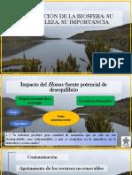 9. Degradación-Contaminación