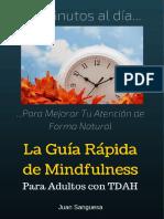 MindfulnessParaAdultosconTDAH.pdf