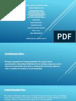 TEMPERAMENTOS.pptx-1