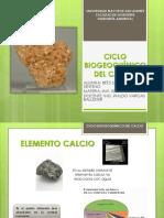 Ciclo Biogeoquímico Del Calcio1