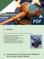 criminal justice system  1   1