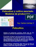 Policultivo y Cultivo Asociado