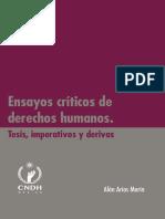 lib-Ensayos-Criticos-DH.pdf