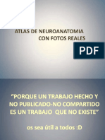 Atlas de Neuroanatomia Con Fotos Rea