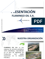 FLAMINGO_OIL.pdf