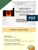 wizualizacja_mozgu