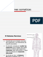 11.- Sensaciones somaticas