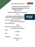 Estructura-Informe Del Plan de Acción-2017_0756