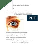 Patologia_aparatului_lacrimal.doc