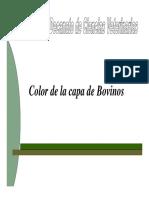 Pelo Color [Modo de Compatibilidad]