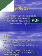 digestion, absorcion lipidos.pdf
