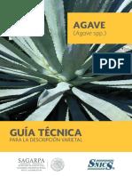 Guia Técnica Del Agave Spp