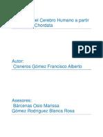 Evolución del Cerebro Humano a partir de la Serie Chordata.pdf