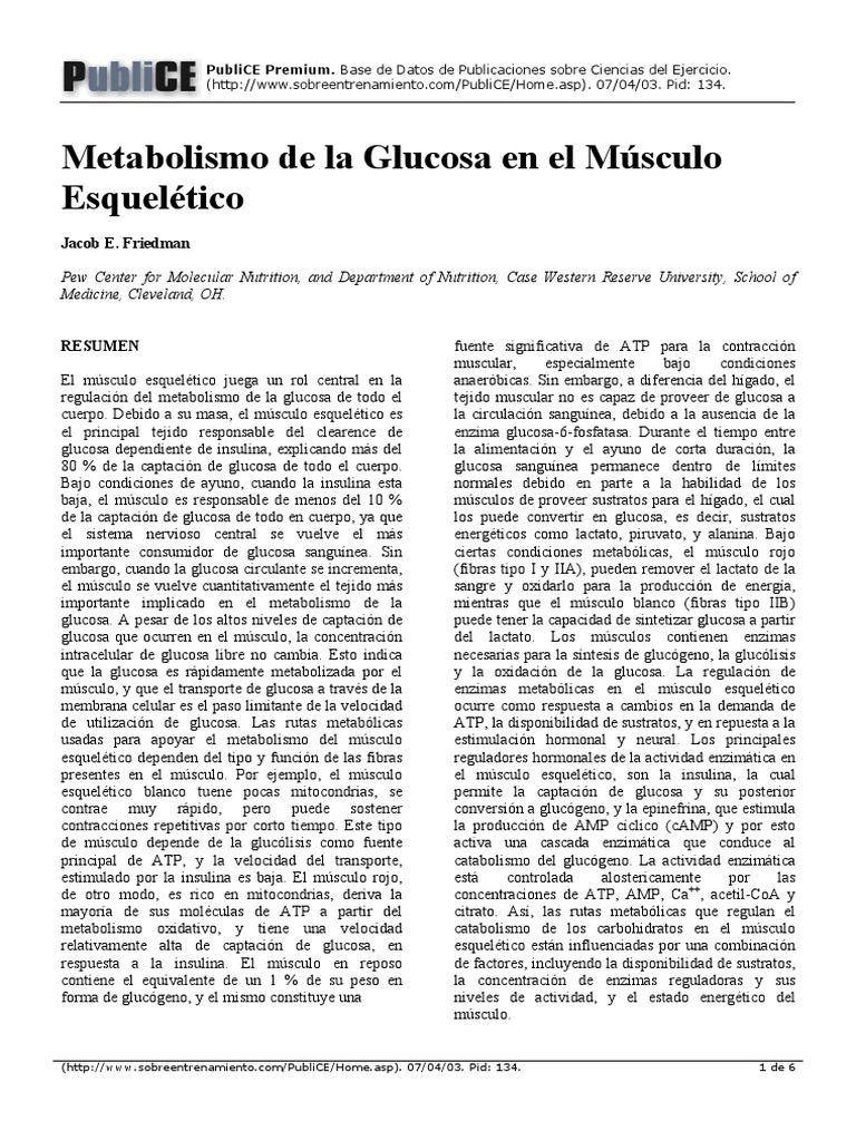 Ketoza metabolizm  Wikipedia Wolna Encyklopedia