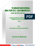 GUIA DE PRACTICAS 2010.pdf
