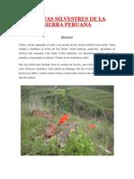 PLANTAS SILVESTRES DE LA SIERRA PERUANA.docx