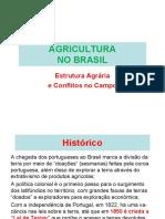 08. Estrutura Agrária No Brasil e Conflitos de Terra.2017