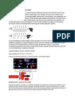 Medición Del GC Con Tecnología Doppler