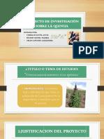 PROYECTO_DE_INVESTIGACION_SOBRE_LA_QUINU.pptx