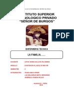 Monografia Las Familias Señor de Burgos