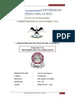 Informe 1 MUESTREO