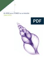 resumen tecnico niif pyme.pdf