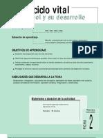 Ficha Nº 2  El ciclo vital el arbol y su desarrollo
