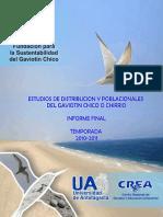 Informe Final Guerra 2010 2011