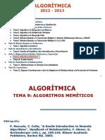 Tema09 AlgoritmosMemeticos 12 13
