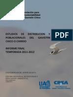 Informe-Final Guerra 20111