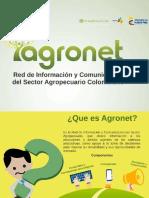 Presentación Agronet - ppt.pdf