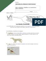 2º-basico-ciencia-GUIA-VERTEBRADOS (1).doc