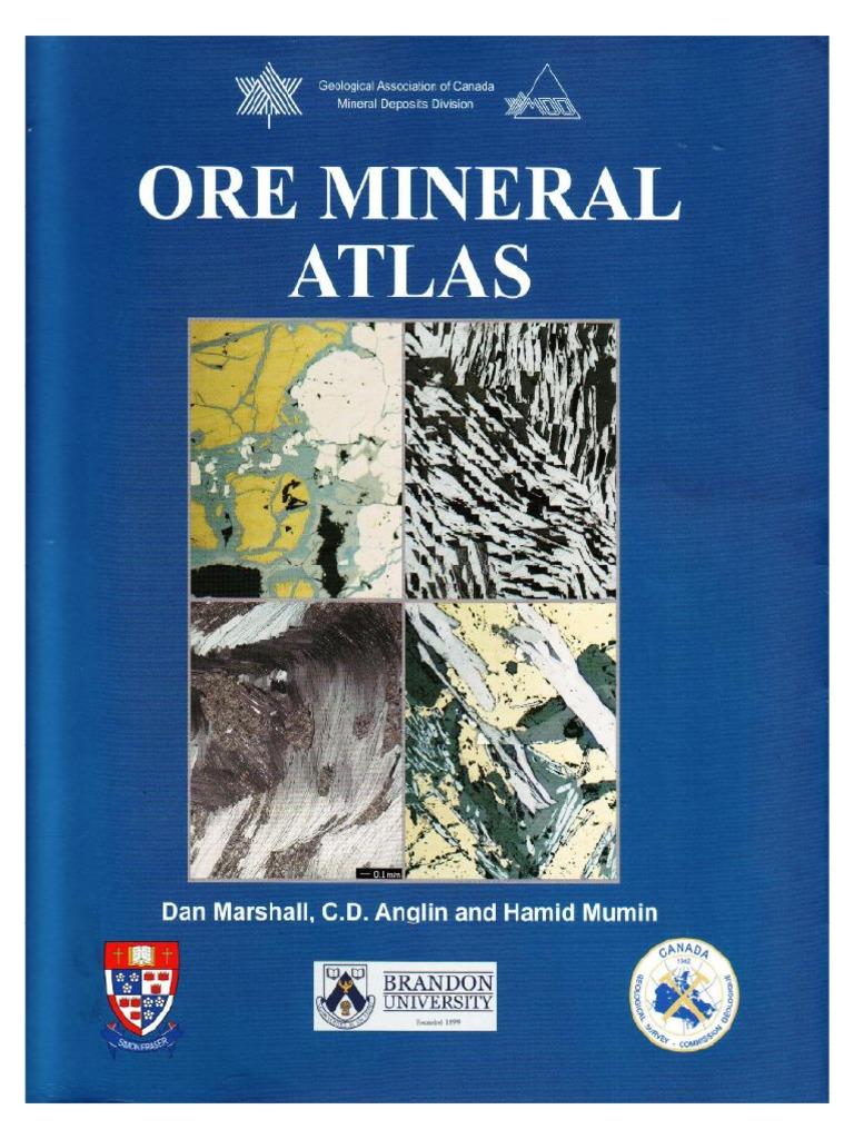 PICOT et JOHAN Atlas of ore minerals