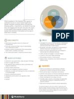 world savvy global competence matrix 2014  1